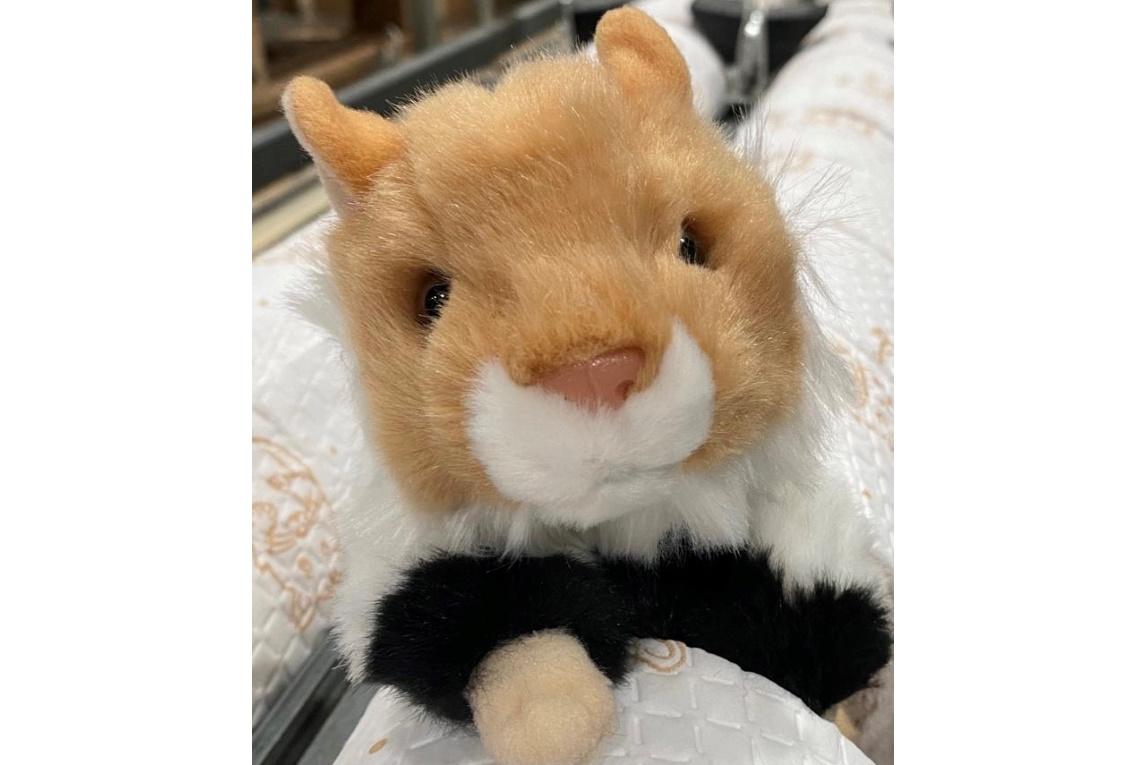 Der Hakle-Hamster