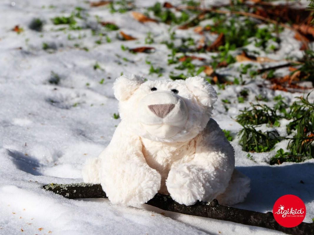 Der Hakle-Eisbär